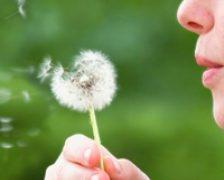Alergiile, cauze si solutii