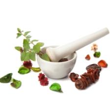 plante pentru intarirea sistemului imunitar