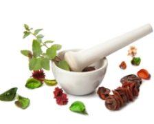 Plante care ajuta la intarirea imunitatii