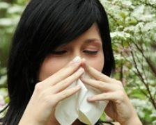 Rinita alergica, agravata primavara
