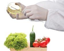 Cum prevenim infectiile cu bacteria E. coli?