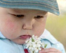 Obezitatea bebelusilor, mostenita inca din uterul mamei
