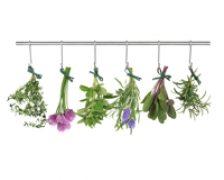 Obiectiv: eliminarea toxinelor si purificarea organismului
