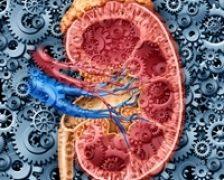 Care este tratamentul recomandat in boala Addison?