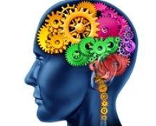 Mituri despre creier: ce si cat este adevarat