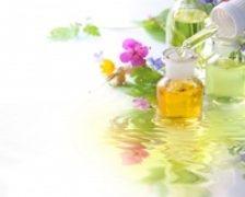 Energizati-va natural cu ginkgo biloba, ginseng, catina, aloe vera