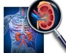Pasi simpli pentru a va proteja rinichii