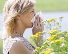 Alergiile, cauza complicatiilor in cazul persoanelor cu BPOC