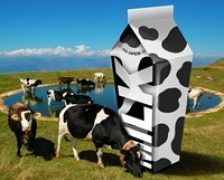Laptele organic este mai sarac in iod