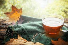 Ceaiuri calde pentru sezonul rece