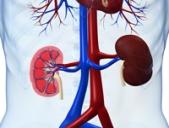 Simptome care va anunta ca aveti probleme cu rinichii
