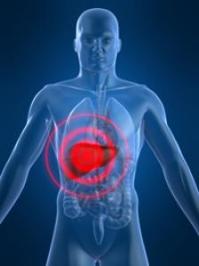 Meniu pentru regenerarea ficatului