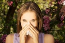 Plante eficiente in controlul alergiilor respiratorii