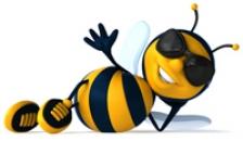 Veninul albinelor, viitorul tratamentului impotriva cancerului?