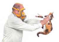 Alergia la animalele de companie: cum o combatem?