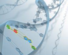 Genele purtatoare de boli ar putea fi identificate printr-un test ADN