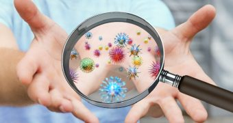 Mituri despre germeni… sub microscop
