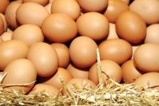 Consumul de oua ar putea reduce riscul de diabet tip II