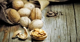 Cate calorii au nucile si care sunt beneficiile lor