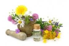 Cele mai indicate plante cu efect diuretic