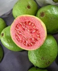 decupat secundara guave