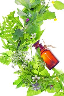 remedii oase si articulatii