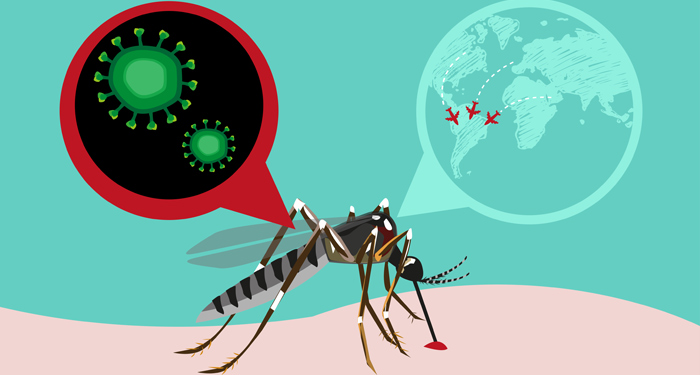 Virusul Zika, o amenintare la nivel global