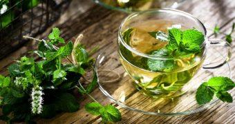 Beneficiile ceaiului de menta