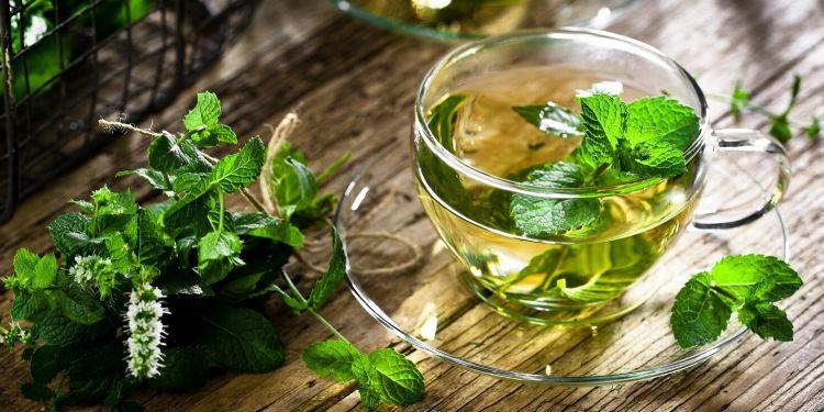ceai de menta)