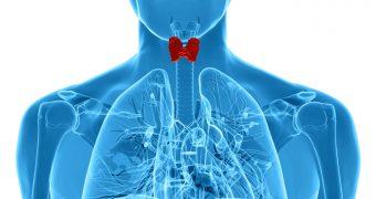 Aveti probleme cu tiroida? Nutrienti esentiali
