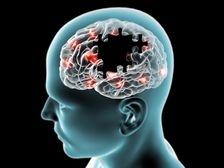 Cum functioneaza retelele neuronale