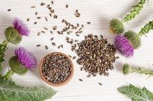 Armurariul: o singura planta, beneficii multiple