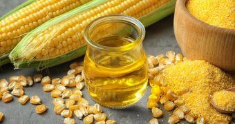 Uleiul de porumb: folosit in cantitati optime, scade nivelul colesterolului