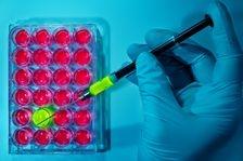 Speranta pentru pacientii care sufera de cancer pancreatic