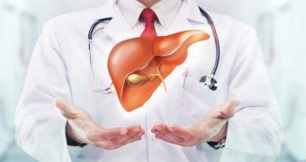 Analizele de sange pentru ficat: care sunt si ce semnifica?