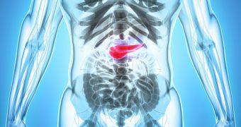 8 semne timpurii ale cancerului de pancreas ce nu trebuie ignorate