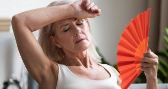 Menopauza: plante care amelioreaza simptomele