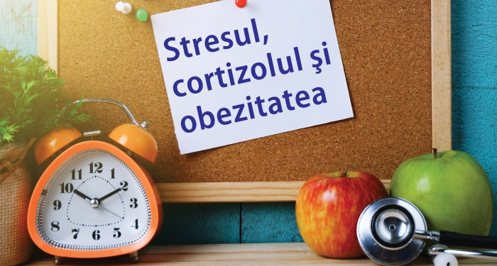 1_principala_stres