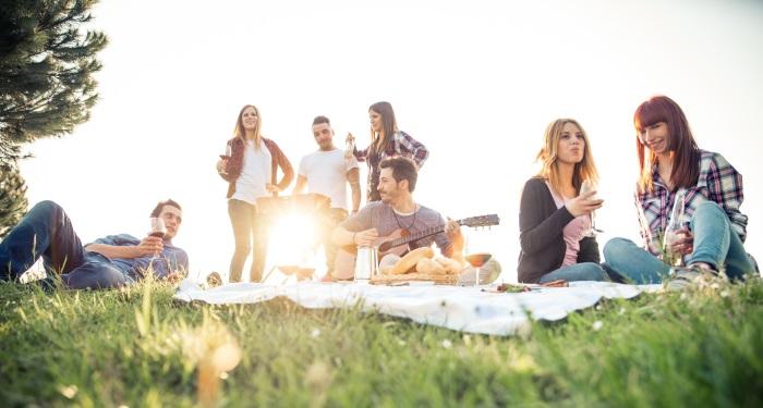 ghid-picnic-1