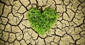 Temperaturile mari, stres suplimentar pentru inima