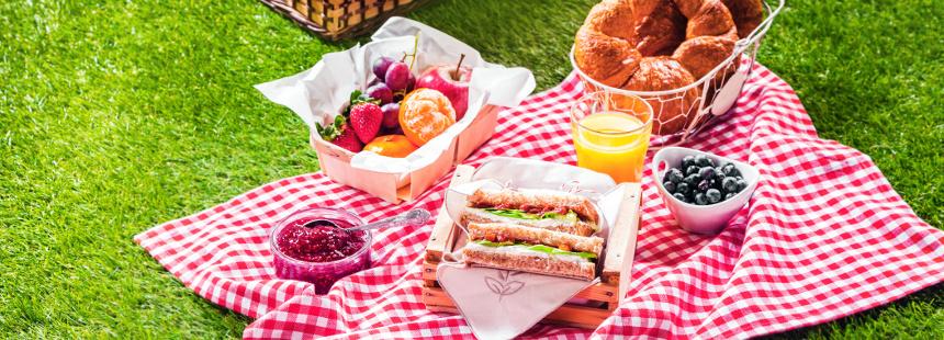Ghid practic pentru un picnic sanatos