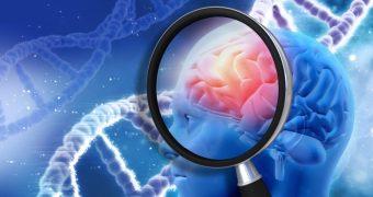 Hemoragia cerebrala: cauze si simptome