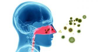 "Simptome comune ale alergiei sezoniere? Nu va lasati ""dusi de nas""!"