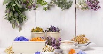 Top plante care lupta impotriva anxietatii