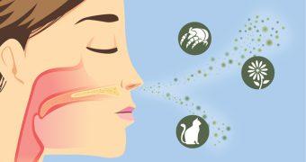 Remedii contra alergiilor respiratorii