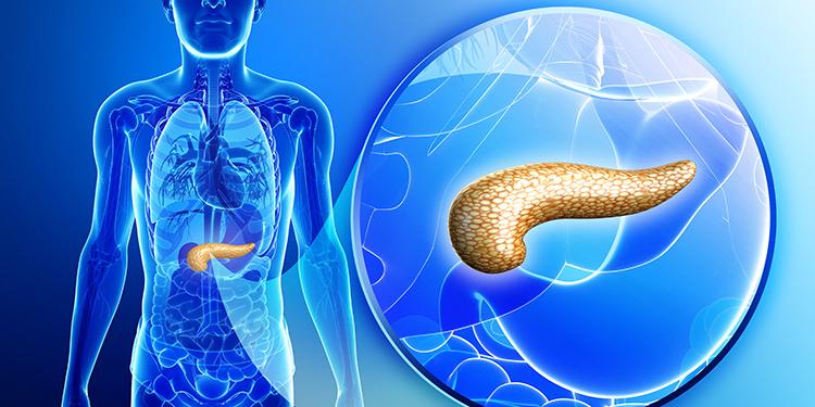 https://www.farmaciata.ro/afectiunile-pancreasului-semnale-de-alarma/