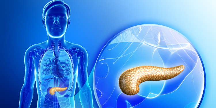 Insuficienta pancreatica