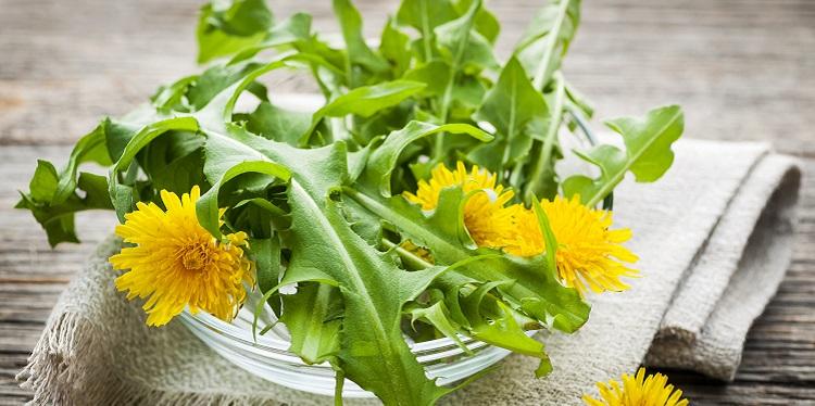 plante care ajuta ficatul