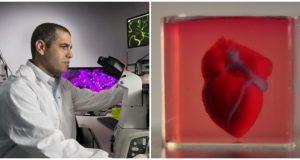 Cercetatorii au creat prima inima 3D printata