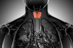 Tiroida: alimente indicate pentru o functionare normala